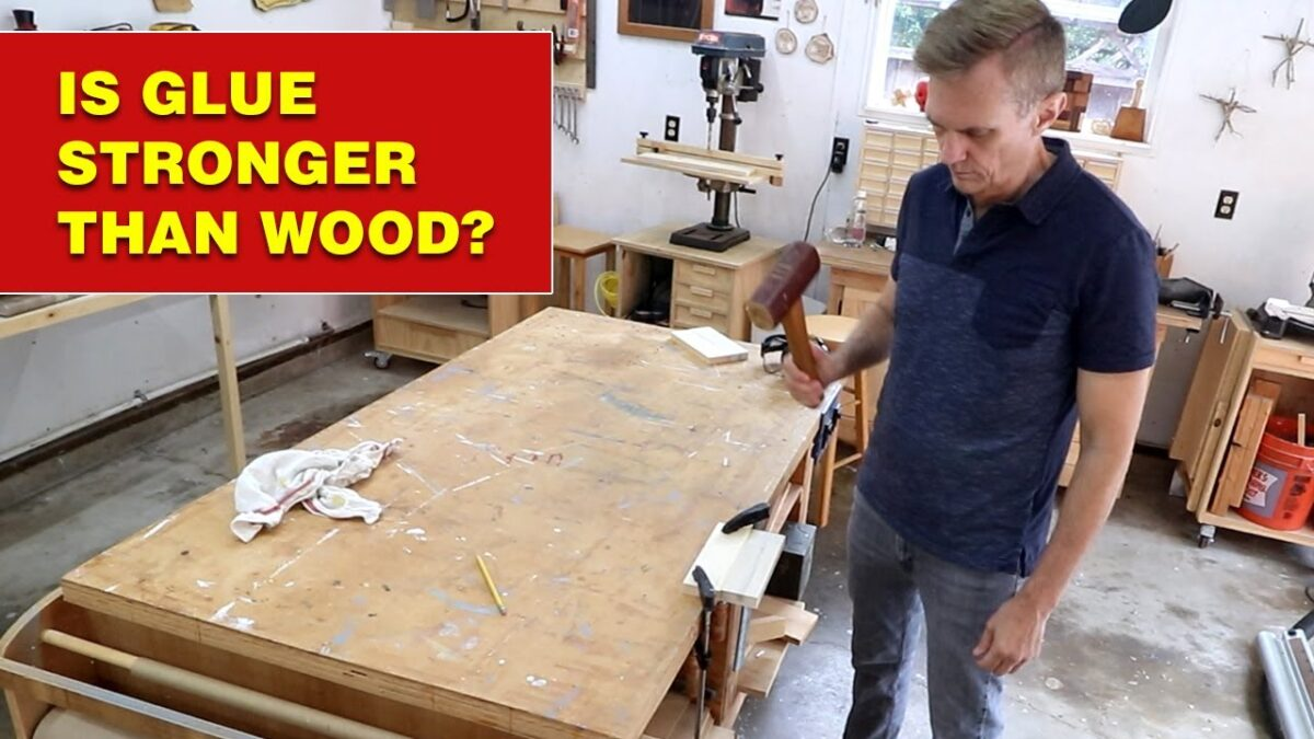 Is wood glue stronger than wood? #shorts